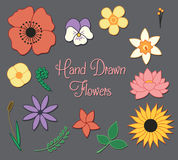 Hand Drawn Flowers Vector Set. A set of hand drawn flowers and leaves Stock Photo