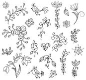 Hand drawn flowers on white background Royalty Free Stock Photo