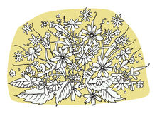 Hand drawn flowers on white background Royalty Free Stock Photography