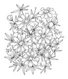 Hand drawn flowers on white background Stock Photo