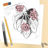 Stationery and hand drawn flowers royalty free illustration