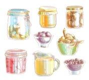 Hand Drawn Food Ingredient Royalty Free Stock Image