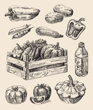 Hand drawn food sketch Stock Photo