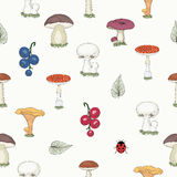 Hand drawn forest mushrooms seamless pattern Stock Image