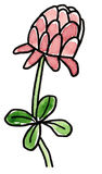 Hand drawn four leaf clover blossom stock image
