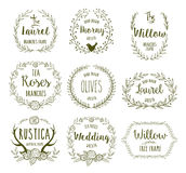 Hand Drawn frames. Hand Drawn floral frames in rustic style for any occasion, vector illustration Stock Photography