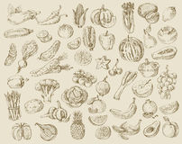 Hand Drawn Fruit And Vegetables Stock Photo