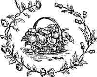 Hand Drawn Fruit Basket Stock Images