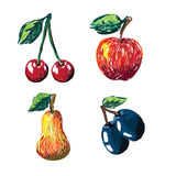 Hand drawn fruit collection Royalty Free Stock Images