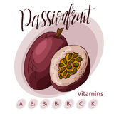 Hand drawn fruit illustration. Sweet passionfruit element. Vector sketch for card or poster. Stock Photography