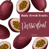 Hand drawn fruit illustration. Sweet passionfruit element. Vector sketch for card or poster. Stock Image