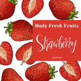 Hand drawn fruit illustration. Sweet strawberry element. Vector sketch for card or poster. Stock Photos