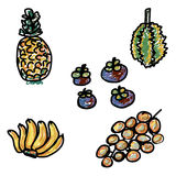 Hand drawn fruit set, illustration of thai fruits set Royalty Free Stock Photo