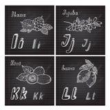 Hand drawn fruits alphabet Stock Image