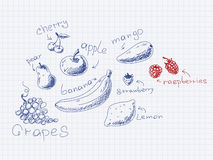 Hand drawn fruits and berries Stock Photo