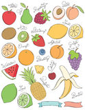 Hand Drawn Fruits. A collection of various Hand drawn fruit. Easy to Edit Stock Photography