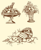 Hand drawn fruits Royalty Free Stock Photography