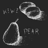 Hand drawn fruits. Summer fruit sketch set. Kiwi and pea. Stock Image