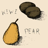 Hand drawn fruits. Summer fruit sketch set. Kiwi and pear. Stock Photo