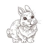 Hand drawn funny rabbit. With bow tie in black and white. Children illustration. Cartoon character. Easter symbol Royalty Free Stock Photography