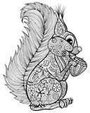 Hand drawn funny squirrel with nut  for adult anti stress Colori Royalty Free Stock Image