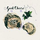 Hand drawn goat cheese and fenugreek leaves Royalty Free Stock Photo
