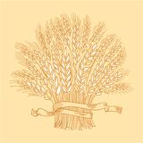 Hand drawn golden ripe wheat sheaf. Vector decorative element, brand icon or logo template Stock Photos