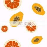 Hand drawn grapefruit and papaya. Royalty Free Stock Photo