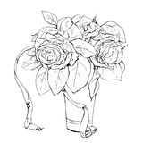 Hand drawn graphic flower roses Royalty Free Stock Image