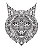 Hand drawn graphic ornate bobcat. With ethnic floral doodle pattern.Vector illustration for coloring book, tattoo, print on t-shirt, bag.  on a white background Stock Photo