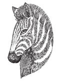 Hand drawn graphic ornate floral zebra head Royalty Free Stock Photos