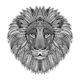 Hand drawn graphic ornate head of lion Stock Photos