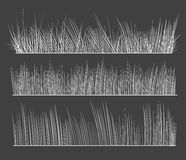 Hand drawn grass. Grass images. A hand drawn illustration Stock Photography