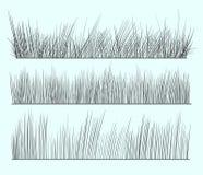 Hand drawn grass. A hand drawn grass illustration Stock Photo