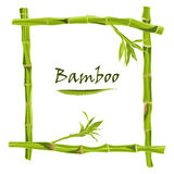 Hand-drawn green bamboo frame with space for text Royalty Free Stock Images