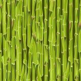 Hand-drawn green bamboo seamless bacground Stock Photo