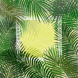 Hand drawn green frame of palm leaves Royalty Free Stock Images