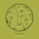 Hand drawn green herbs. Circle design background. Text place. Royalty Free Stock Photography