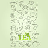 Hand drawn green tea doodle concept vector Royalty Free Stock Photo