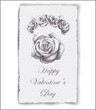 Hand-drawn greeting card for Valentine's Day with roses. Royalty Free Stock Photography
