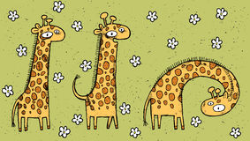 Hand drawn grunge illustration of three giraffes on floral backg Stock Photos