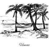 Hand drawn hammock around palm trees Royalty Free Stock Photo