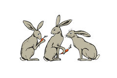 Hand drawn hares Royalty Free Stock Images