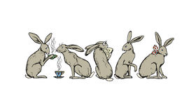 Hand drawn hares Stock Photo