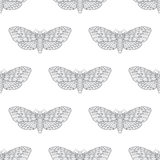 Hand drawn hawk moth vector seamless pattern Royalty Free Stock Image