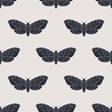Hand drawn hawk moth vector seamless pattern Stock Images