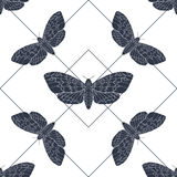 Hand drawn hawk moth vector seamless pattern Royalty Free Stock Images