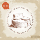 Hand drawn head of cheese and triangle piece of cheese Stock Images