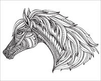 Hand drawn head of horse in graphic ornate style. Black and white vector illustration. It may be used for design of a t-shirt, bag, postcard, a poster and Stock Images