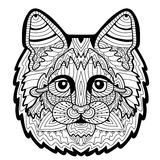 Hand-drawn head of a Maine Coon. White background. Element for your design Stock Image